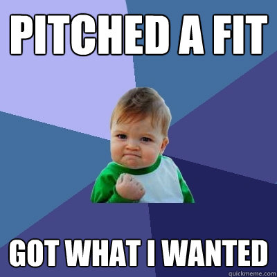 pitched a fit got what i wanted - pitched a fit got what i wanted  Success Kid