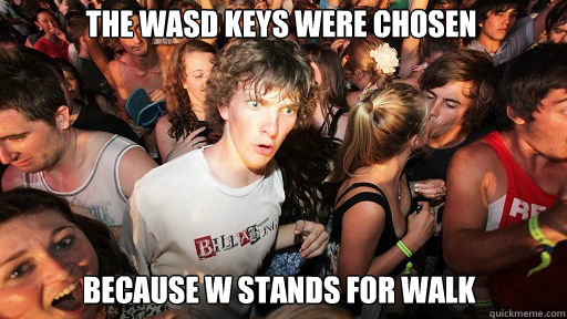 the wasd keys were chosen Because W stands for walk - the wasd keys were chosen Because W stands for walk  Sudden Clarity Clarence