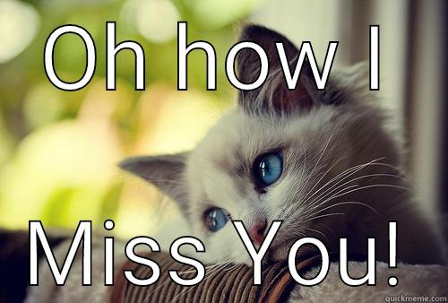 Missing You - OH HOW I MISS YOU! First World Problems Cat