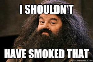 d07084a42061bcbc863f5da89dfea8d7a3b99060b119353c219150055c66c495 i shouldn't have smoked that shouldnt have smoked that hagrid