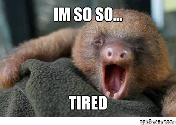 im so so tired - ermahgerd sloth - quickmeme