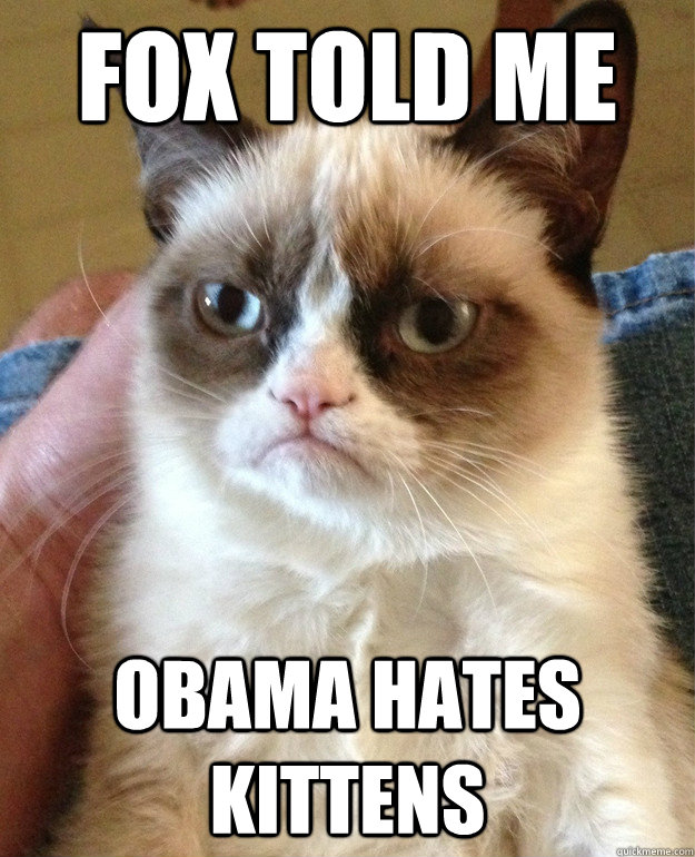 fox told me obama hates kittens - fox told me obama hates kittens  Misc