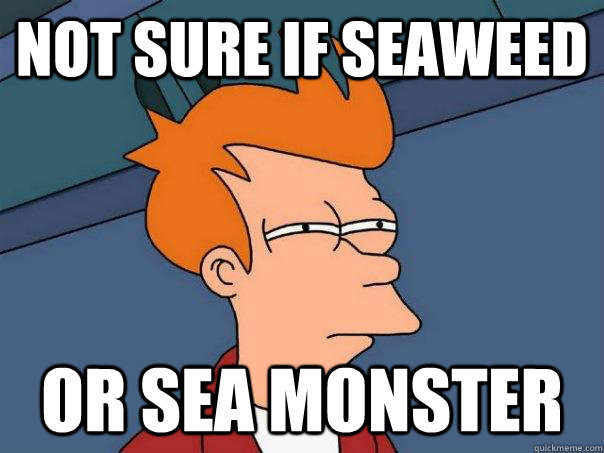 not sure if seaweed  or sea monster - not sure if seaweed  or sea monster  Futurama Fry