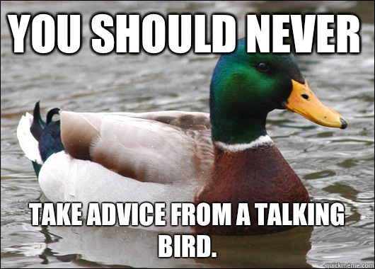 You should never Take advice from a talking bird. - You should never Take advice from a talking bird.  Actual Advice Mallard