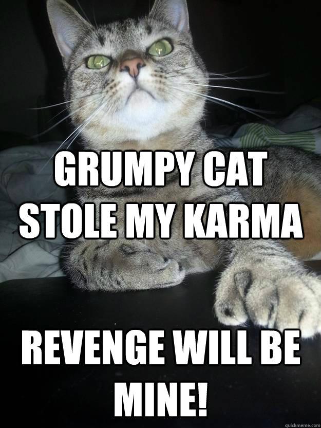 Grumpy cat stole my karma revenge will be mine!