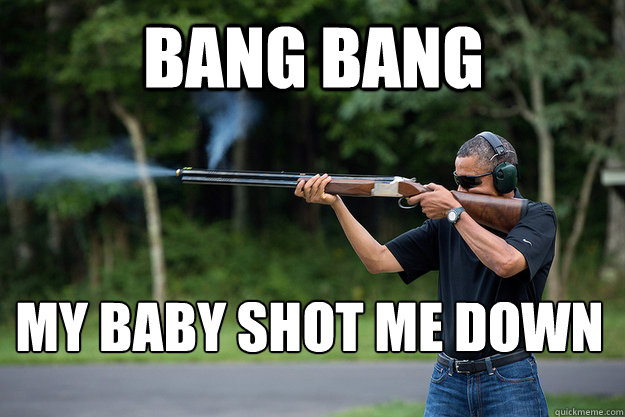 Bang Bang my baby shot me down   Obamas Got A Gun