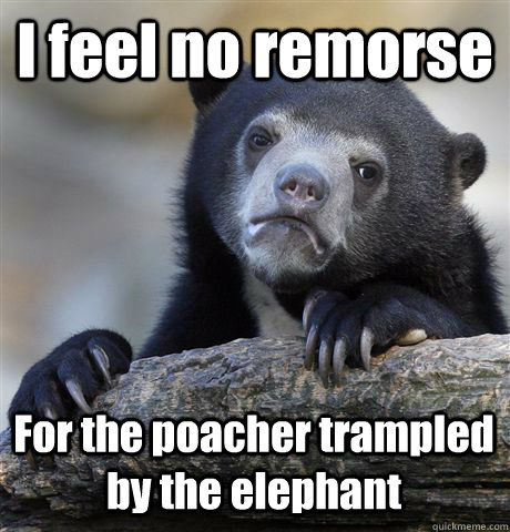I feel no remorse  For the poacher trampled by the elephant - I feel no remorse  For the poacher trampled by the elephant  Confession Bear
