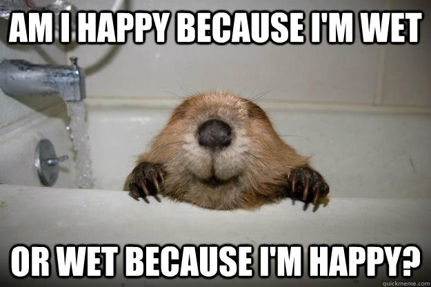 Am I happy because i'm wet or wet because i'm happy?