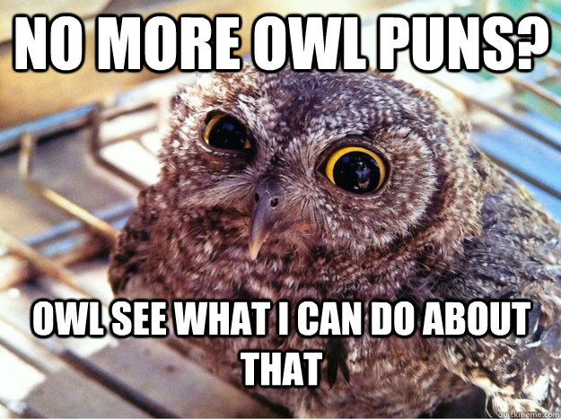No more owl puns? Owl see what I can do about that - No more owl puns? Owl see what I can do about that  Skeptical Owl
