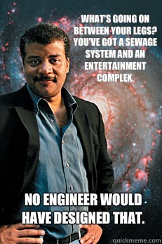 What's going on between your legs? You've got a sewage system and an entertainment complex. No engineer would have designed that. - What's going on between your legs? You've got a sewage system and an entertainment complex. No engineer would have designed that.  Neil deGrasse Tyson