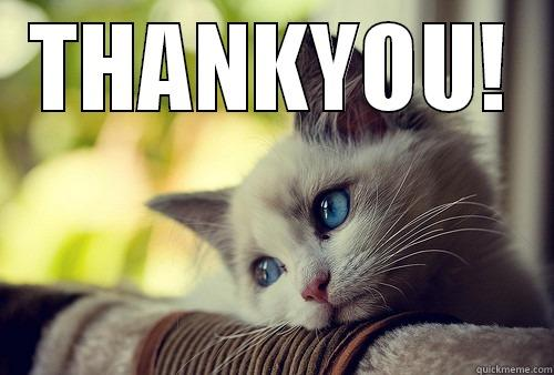 THANKYOU BY CAT - THANKYOU!  First World Problems Cat