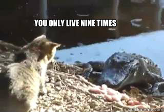 You only live nine times  YOLNT