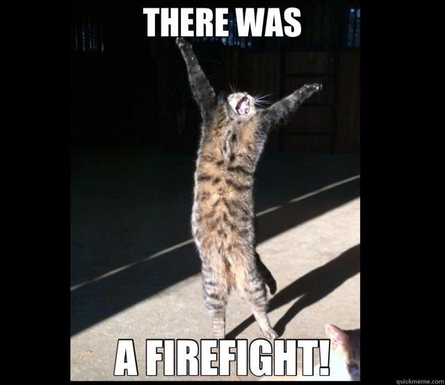 d13c09d1520253e0bea7b4f71a859fe350a16dc40376da4882042d789b209147 there was a firefight! boondock saints cat quickmeme