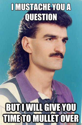 I Mustache you a question but i will give you time to mullet over - I Mustache you a question but i will give you time to mullet over  Mullet Man