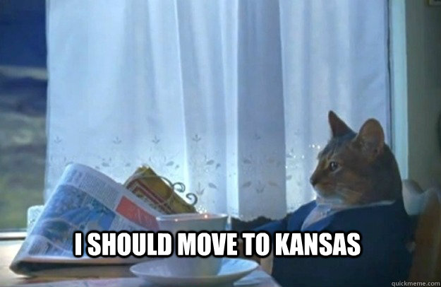 I should move to Kansas - I should move to Kansas  Sophisticated Cat