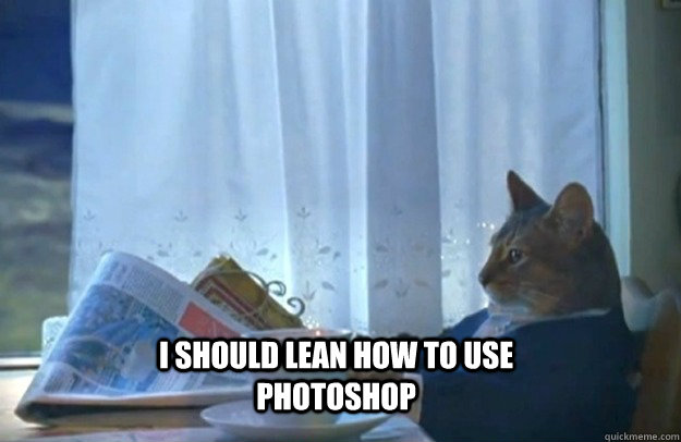 I should lean how to use photoshop - I should lean how to use photoshop  Sophisticated Cat