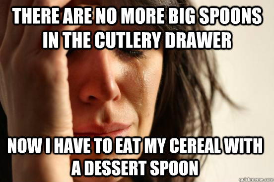 There are no more big spoons in the cutlery drawer Now I have to eat my cereal with a dessert spoon - There are no more big spoons in the cutlery drawer Now I have to eat my cereal with a dessert spoon  First World Problems