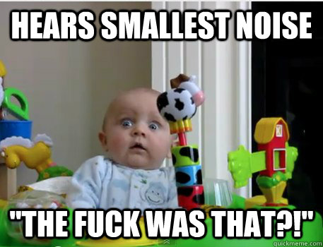 Hears smallest noise