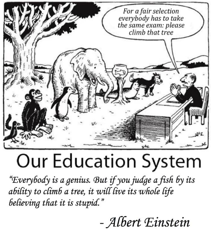 Our Education in a nutshell -   Misc