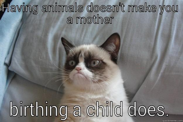 Funny Mother S Day Meme : Happy mother's day? quickmeme