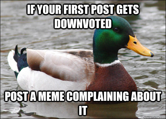If your first post gets downvoted post a meme complaining about it - If your first post gets downvoted post a meme complaining about it  Actual Advice Mallard