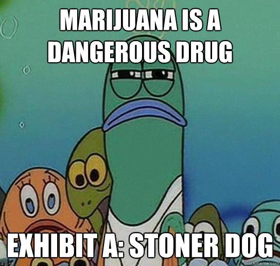 Marijuana is a dangerous drug exhibit a stoner dog for Fish sucking penis