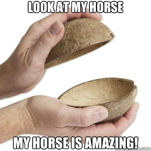 Look at my horse my horse is amazing! - Look at my horse my horse is amazing!  Python Horse