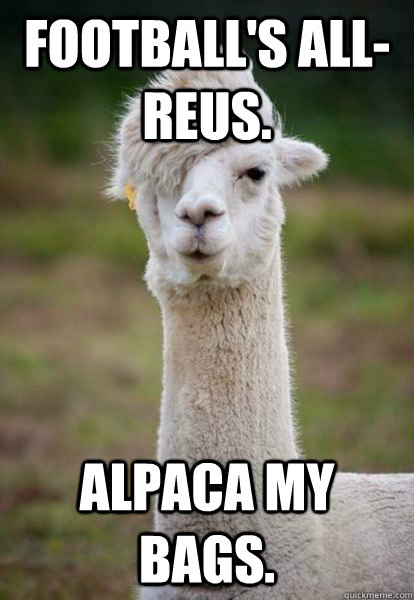 Football's all-Reus. Alpaca my bags. - alpaca hipster ...