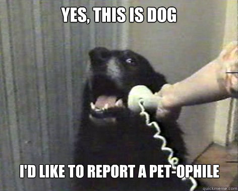 yes, this is dog I'd like to report a Pet-ophile  yes this is dog