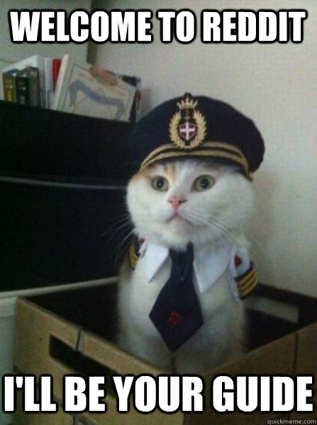 2d032c43c Welcome to Reddit I ll be your guide - Captain kitteh - quickmeme