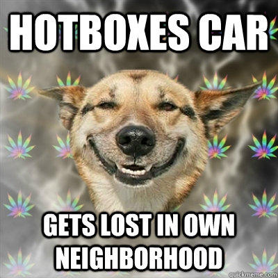 Hotboxes Car Gets lost in own neighborhood - Hotboxes Car Gets lost in own neighborhood  Stoner Dog