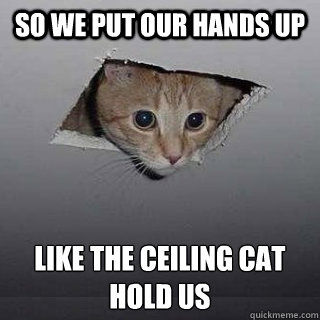 so we put our hands up like the ceiling cat hold us - so we put our hands up like the ceiling cat hold us  Ceiling Cat