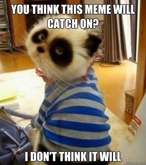You think this meme will catch on? I don't think it will  Pessimistic Panda Cat