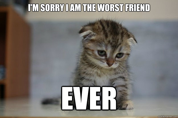I'm sorry i am the worst friend EVER - Sad Kitten - quickmeme