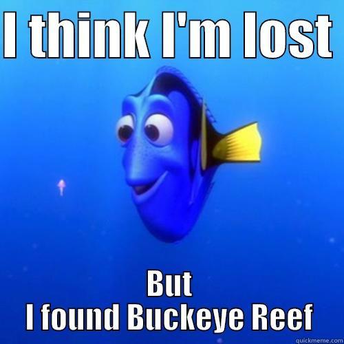 I THINK I'M LOST  BUT I FOUND BUCKEYE REEF dory