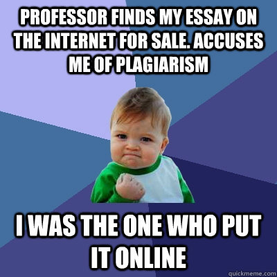 essay about my professor