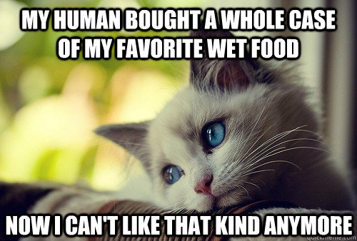 My human bought a whole case of my favorite wet food Now I can't like that kind anymore - My human bought a whole case of my favorite wet food Now I can't like that kind anymore  First World Cat Problems