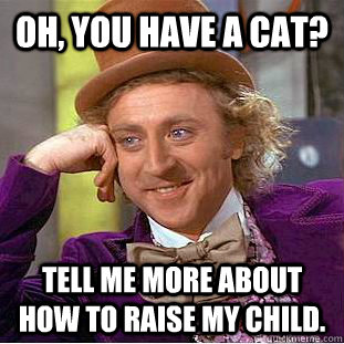 Oh, you have a cat?  Tell me more about how to raise my child.  - Oh, you have a cat?  Tell me more about how to raise my child.   Condescending Wonka