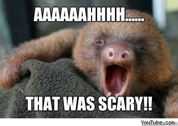 AAaaaahhhh...... That was Scary!! - ermahgerd sloth ...