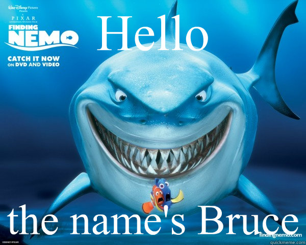 Hello the name's Bruce - Hello the name's Bruce  bruce finding nemo