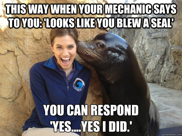 This way when your mechanic says to you: 'Looks like you blew a seal' You can respond  'yes....yes I did.' - This way when your mechanic says to you: 'Looks like you blew a seal' You can respond  'yes....yes I did.'  Crazy Secret