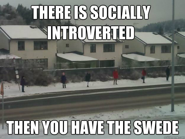 there is socially introverted then you have the swede