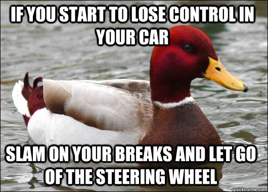 If you start to lose control in your car Slam on your breaks and let go of the steering wheel - If you start to lose control in your car Slam on your breaks and let go of the steering wheel  Malicious Advice Mallard