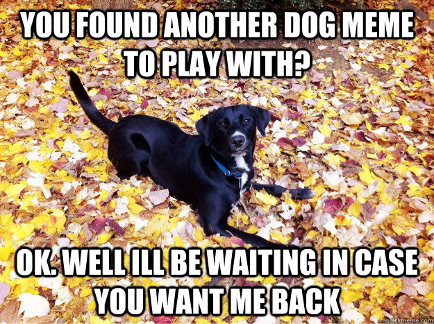 you found another dog meme to play with? ok. well ill be waiting in case you want me back