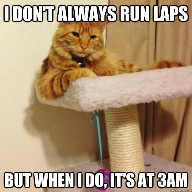 I don't always run laps But when I do, it's at 3am