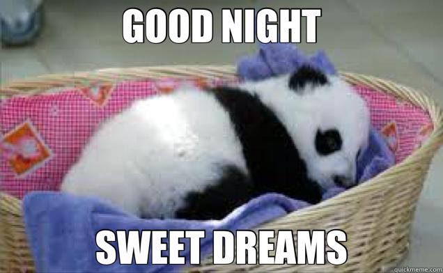 GOOD NIGHT SWEET DREAMS - GOOD NIGHT SWEET DREAMS  panda