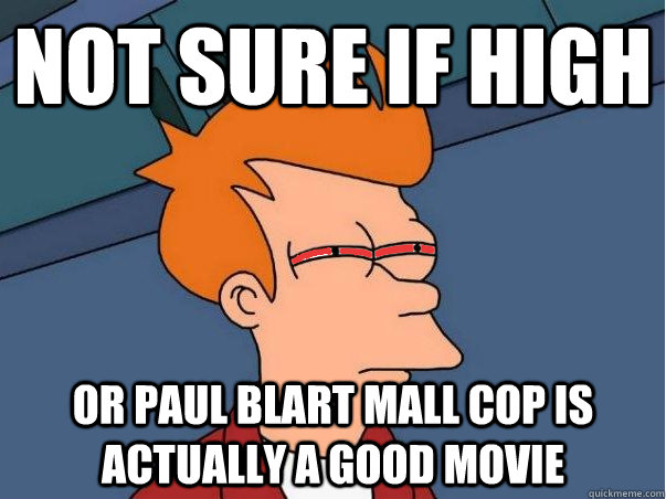 Not sure if high Or Paul Blart mall cop is actually a good movie - Not sure if high Or Paul Blart mall cop is actually a good movie  High Fry