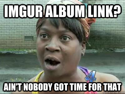 IMGUR ALBUM LINK? AIN'T NOBODY GOT TIME FOR THAT - IMGUR ALBUM LINK? AIN'T NOBODY GOT TIME FOR THAT  Misc