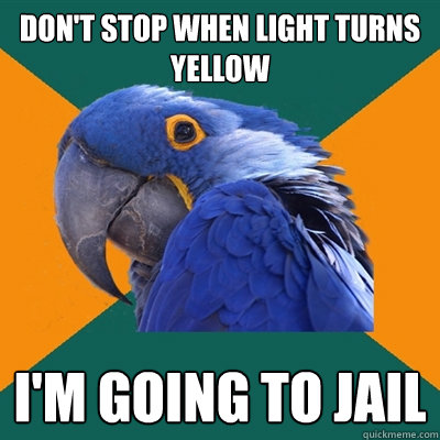 don't stop when light turns yellow i'm going to jail - don't stop when light turns yellow i'm going to jail  Paranoid Parrot