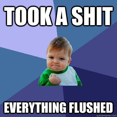 took a shit everything flushed - took a shit everything flushed  Success Kid